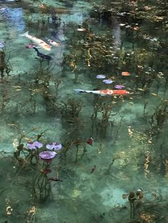 It is a real pond at Nemichi-jinja shrine, such as like the Claud Monet paintings in Seki, Gifu pref. 岐阜県根道神社の「名もなき池」