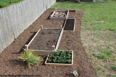 Raised Bed Gardens as Landscaping.