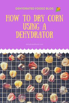 Dehydrated corn kernels make for a scrumptious snack.  Read on to find out how to make them. #driedcorn #cornnuts #snack #howtomake #dehydratedcorn #snacks #recipe Nesco Dehydrator, Dehydrator Recipes, Canned Corn, Frozen Corn, Chowder Recipes, Dehydrated Food, Corn Chowder, Beef Jerky