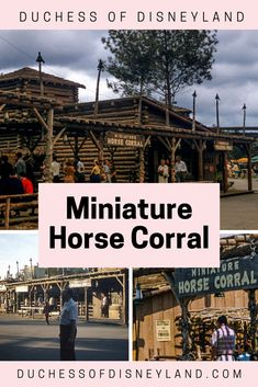 Miniature Horse Corral, Frontierland, Disneyland Disneyland History, Horse Corral, Zoo Animals, Pony, Miniatures, Horses, Vintage, Art, Pony Horse
