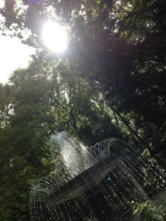 In the forest with fountain