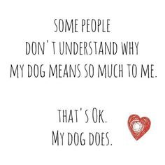 Dog means so much to me