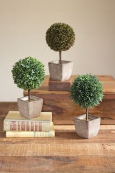 Kalalou Ball Top Artificial Topiaries -  Set Of 3 - Accessorize your bookshelf or mantle with this set of artificial garden topiaries. With their classic shape, life-like shrubbery, and pots made of natural fiber, these charming accessories will add texture and earthy color to any decor.