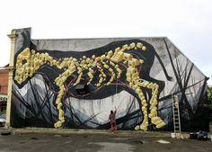 Street Art By Shida and ENO in Hamilton, Taumarunui, Tekuiti and Wanganui, New Zealand.