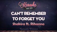 Shakira ft. Rihanna - Can't Remember To Forget You   SING SING KARAOKE
