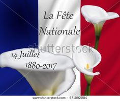 14 juillett la fete nationale on france flag used as background with calla flowers