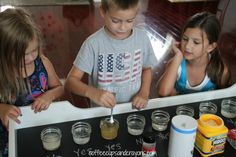 Does it dissolve  Science Activity for Kids
