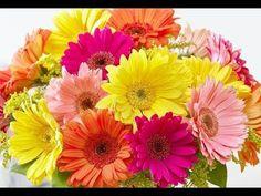 How to make Easy flowers - gerbera paper flower (Very Easy) / Flores de papel / DIY Regalo para mamá - YouTube