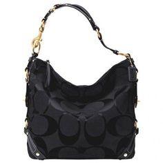 Image detail for -Coach carley large handbag knockoff, louis vuitton monogram mini ...