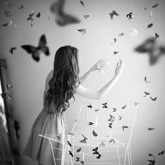butterflies in black and white