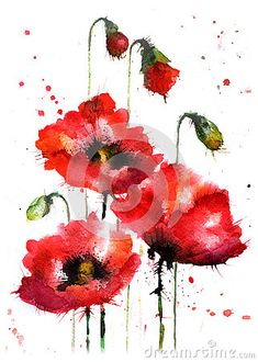 de flores Watercolor hand-drawn poppy flowers - Millions of Creative Stock Photos, Vectors, Videos and Music Files For Your Inspiration and Projects. Watercolor Poppies, Watercolor And Ink, Watercolor Illustration, Watercolour Painting, Simple Watercolor, Tattoo Watercolor, Watercolor Animals, Watercolor Background, Watercolor Landscape