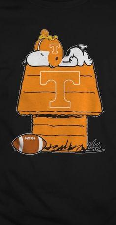 Snoopy's Tn Vols fan.