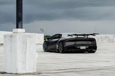Graphite Shark - Slammed Lamborghini Huracan