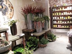 Cool, hand-built pottery with faux succulents in the Home Department