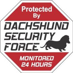 Doxy News. Super Cute puppy Items for your home.  Wiener dog Security Sign - I need this for my house!! The blog links you to the actual Dachshund item to buy.