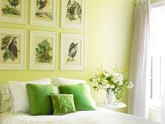 green! Stephen Shubel   Portfolio By Project
