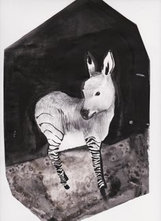 Valeria bertolini   30 days challenge---day 3---an animal you think is really cute
