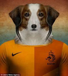 Kooikerhondje/ Kooiker Hound - Netherlands National Team