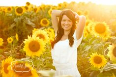 Field of sunflowers Senior Pictures