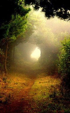 Then she saw the light streaming from the path ahead, and she rushed forward into the unknown.