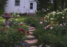 「Blooming rose garden」の画像検索結果