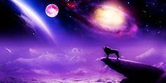 Sanando el Alma: Luna Llena eclipsada en Leo: con Amor, Cocreamos u...
