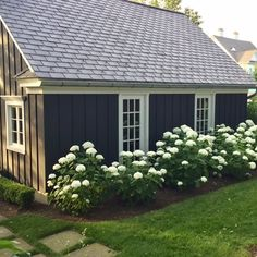 Likes, 8 Comments - Upcountry Living Ranch Landscaping Ideas, Hydrangea Landscaping, Front House Landscaping, Backyard Landscaping, House Landscape, Landscape Design, Incrediball Hydrangea, Shed Makeover, Backyard Buildings