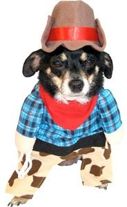 dog cowboy costume halloween dealsplus