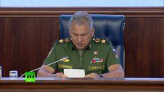 Шойгу: РФ предотвратила расширение деятельности террористических группир...