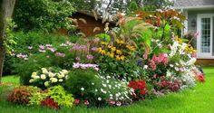 5 Engrais Naturels et Gratuits Pour des Plantes en Super Forme.