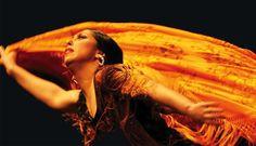 Las Minas Flamenco Tour vuelve a la India, te contamos todo a solo un click