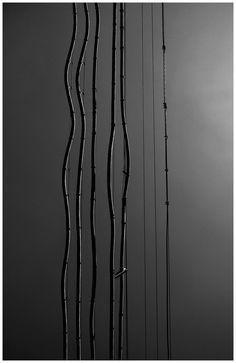 yama-bato2: yama-bato: By yama-bato Wires 3 8.20.12 ©yama-bato