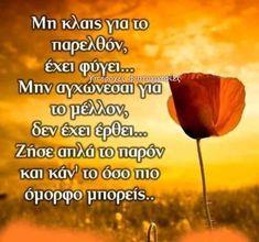 Greek Quotes, Tatoos