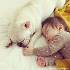 お手てつないで #frenchbulldog #frenchie #dog #daughter #babygirl #フレンチブルドッグ #女の子