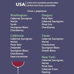 Vinos del mundo: USA  #wine #wines #winelover #winelovers #winetour #winetasting #sommelier #tasting #wineyard #chileanwine #vino #vinos #enologia #winelife #infographic #usa