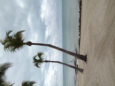 Key West view... From Waldorf Astoria!