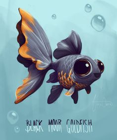 Anna Owen I think I d be a Black moor goldfish Here s a sketch for Sketch Dailies Cute Drawings, Animal Drawings, Poisson Combatant, Fish Sketch, Fish Art, Cute Creatures, Cute Art, Bunt, Concept Art