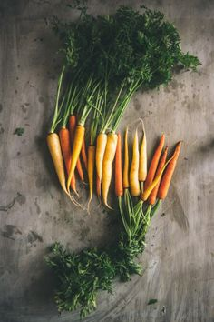 Roasted carrots with fennel and goats cheese is a quick and tasty dish to prepare. How To Plant Carrots, Oven Roasted Carrots, Bio Food, Dark Food Photography, Goat Cheese Recipes, Food Painting, Vegetable Seasoning, Greek Recipes, Gastronomia
