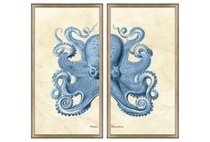 Every time they have this, I am so drawn to it. Blue Octopus Diptych, Silver Frame      $369.00