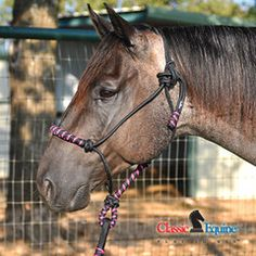 rope halter | Ropes For Less