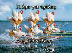 Good Night, Good Morning, Decor, Nighty Night, Buen Dia, Decoration, Bonjour, Decorating, Good Night Wishes