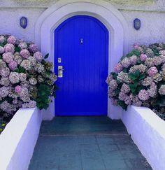 a porta azul (by cronópio)