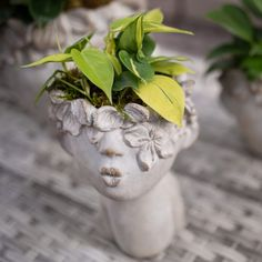 A magical planter, this little leaf fairy has a head of foliage-hair that will continue to grow! This cement planter goes beautifully in a hallway, bedroom or anywhere you need a splash of magic in your home. #indoorplants #fairy Bedroom Plants Decor, House Plants Decor, Plant Decor, Cement Planters, Indoor Planters, Fairy Pots, Tropical House Plants, Phalaenopsis Orchid, Romantic Homes
