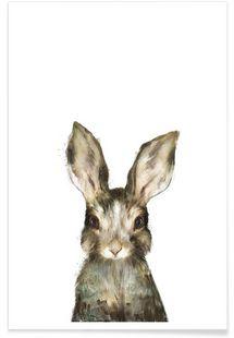 Little Rabbit - Amy Hamilton - Premium Poster