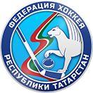 Турниры - Федерация хоккея республики Татарстан