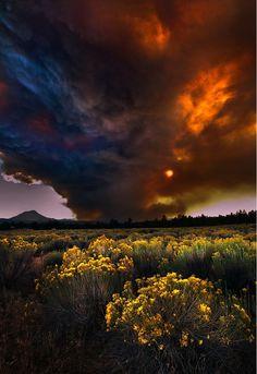 Pyrocumulonimbus formed by wild fire - Pole Creek, Oregon