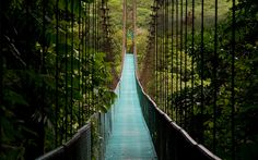 Check out the best tours and activities to experience Mistico Arenal Hanging Bridges Park. Don't miss out on great deals for things to do on your trip to La Fortuna! Reserve your spot today and pay when you're ready for thousands of tours on Viator. Costa Rica, Volcano National Park, National Parks, Budapest, Paradis Tropical, Voyager Seul, The Perfect Getaway, Excursion, Monteverde