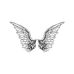 Angels Wings ❤ liked on Polyvore featuring fillers, drawings, wings, backgrounds, doodles, effects, text, quotes, details and texture