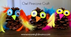 Are you looking for a fun fall craft? This adorable pinecone craft is easy to make and kids will enjoy creating a variety of owl figures.