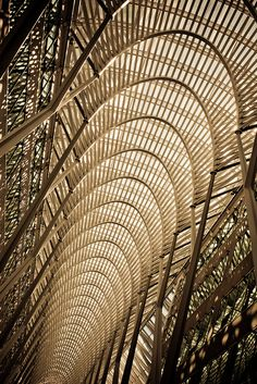 Brookfield Place by Santiago calatrava. Photo by Thomas Hawk.  Can you see this a a wall poster photo? Can you see it as the inspiration for a necklace? for a blouse? for a repeating but growing/graduated pattern on a skirt? Beauty inspires beauty throughout our lives!
